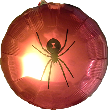 Custom Spider Art Balloon