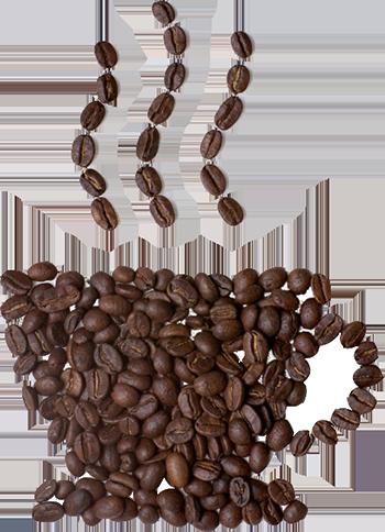 bean cup copy